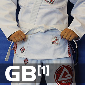 GB1 - The Fundamentals and Basics of Brazilian Jiu Jitsu