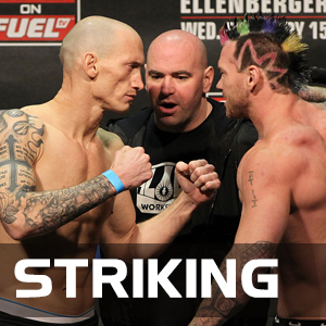 Striking Class - MMA Striking For Beginners to Advanced